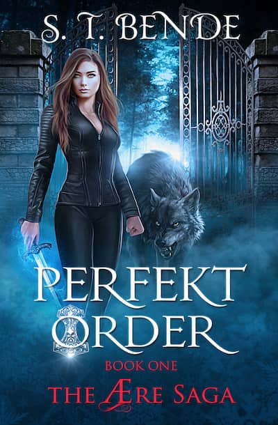 Book cover for Perfekt Order by S.T. Bende